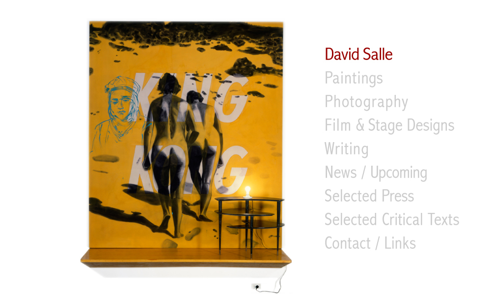david salle how to see pdf